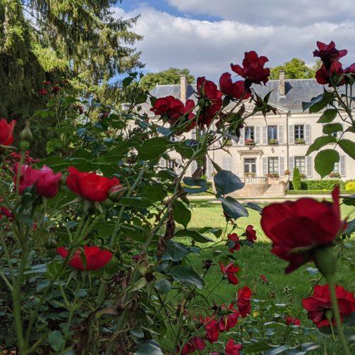 Maririe-Les-Riceys-Parc